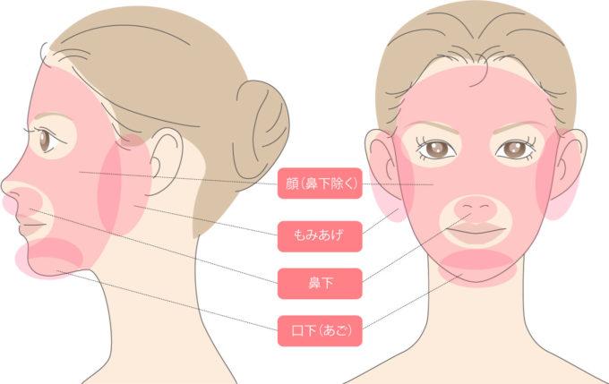 銀座カラー,顔脱毛の部位